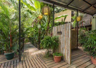 Greenery all around at Danyasa Yoga Retreat and Eco Lodge in Costa Rica